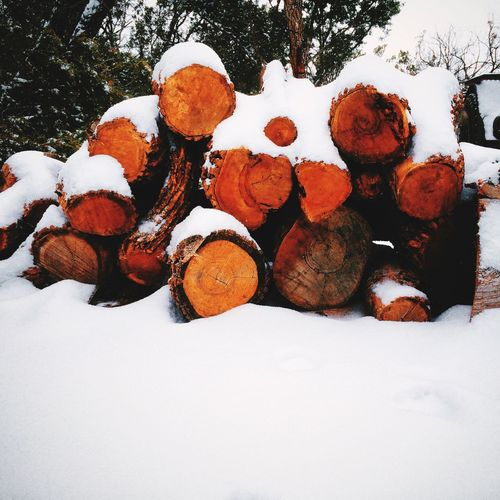 SnowVentures Snow Logs Wood Ice