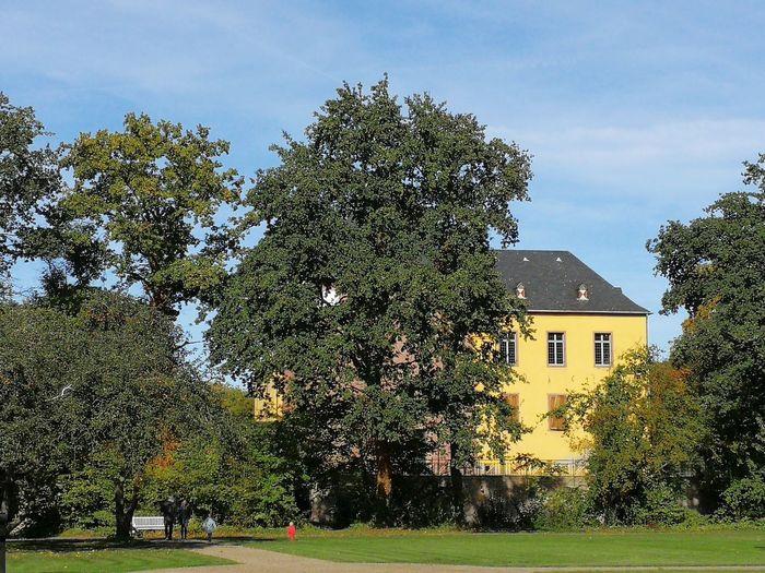 Schloss Burgau Dueren Castle Schloss Burgau Dueren Tree Sky Architecture Building Exterior Built Structure Grass