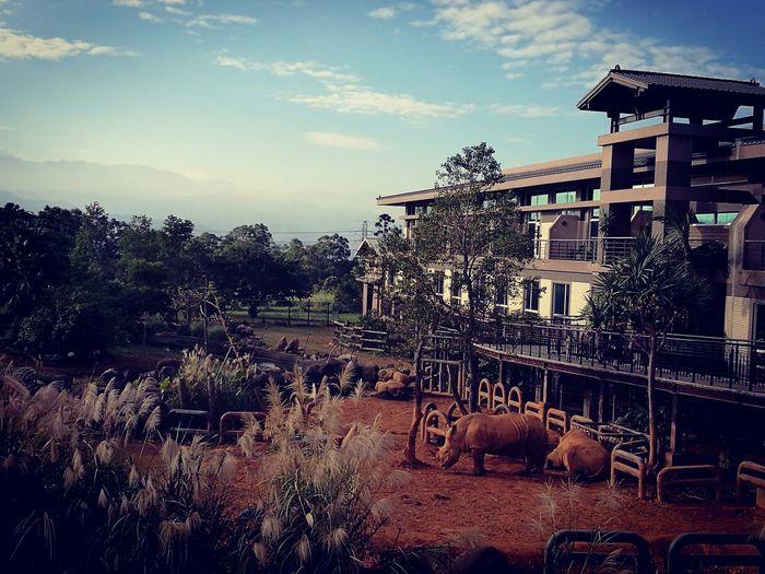 Leofoo resort