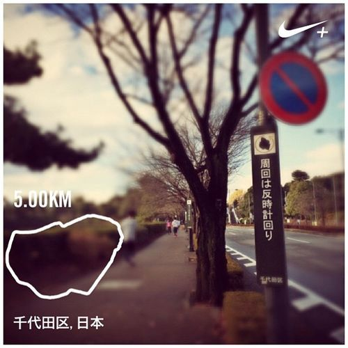 Running Nike Run GYAKUSOU Nikeplus 皇居 ランニング ナイキ Imperialpalace ラン Theimperialpalace
