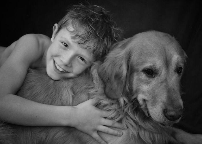 Close-Up Portrait Of Golden Retriever Dog Against Black Background