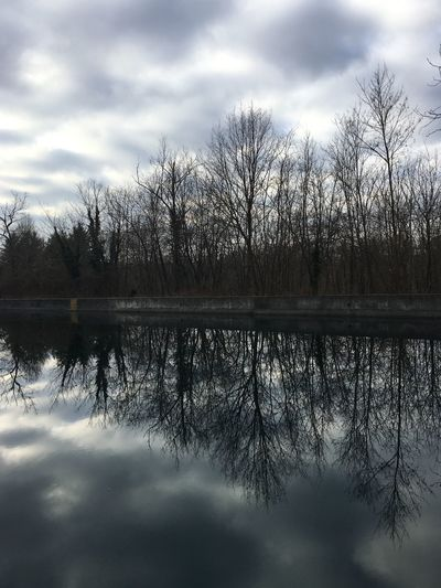 Canal River Reflection Reflection Sky Cloud - Sky Tree Nature Tranquility Tranquil Scene Beauty In Nature Water Scenics Outdoors Bare Tree Silhouette No People Day