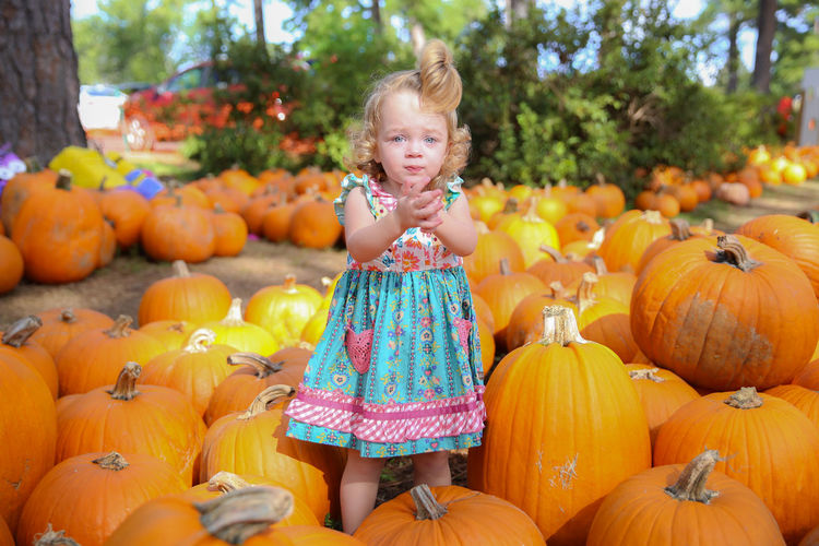 Harper having fun at the pumpkin patch Autumn Autumn Colors Autumn Leaves Blue Eyes Halloween Happiness Having Fun Holidays Pumpkins Thanksgiving Autumn Decoration Earth Colors Fall Season Fall Season Background Images Fall Season Colors Happy Kid Holidays Background Kid Playing Kids At Pumpkin Patch Orange Color Pastel Colors Pumpkin Carving Pumpkin Patch Seasonal Decorations Similing Kid