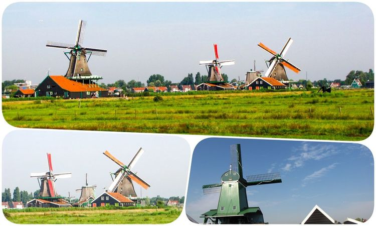 Amsterdam Holland Renewable Energy Alternative Energy Wind Turbine Wind Power Turbine Fuel And Power Generation Environmental Conservation Environment Sky Traditional Windmill Nature Field Day Air Vehicle Architecture Grass Land Landscape Technology Airplane No People Outdoors