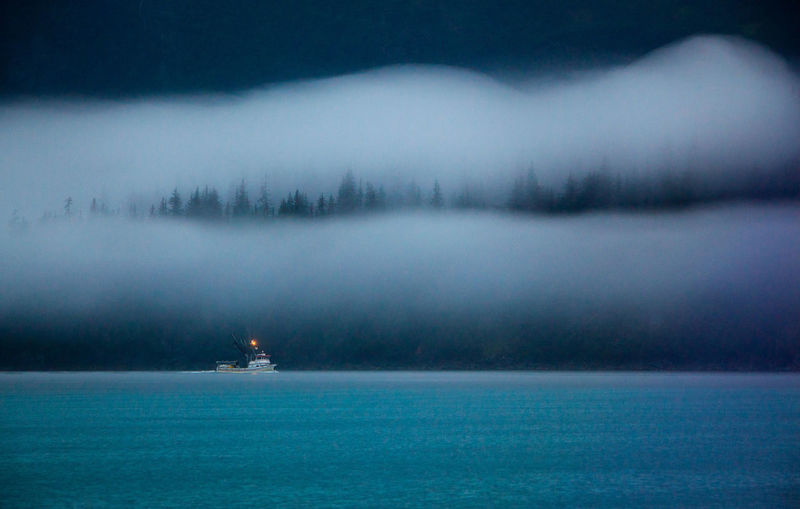 Headed Home. Alaska - Salmon trawler headed home. Soft Grey light, rain, fog, and streaming clouds - the Prince William Sound. Atmosphere Beauty In Nature Blue Boat Calm Fishing Boat Forest Lake Landscape Seascape Majestic Mist Nature Outdoors Salmon Trawler Scenics Sea Tranquil Scene Tranquility Water Waterfront Fine Art Photography