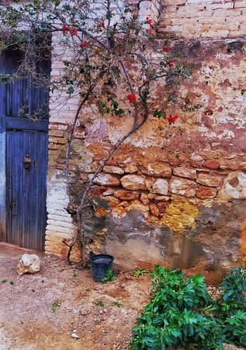 Old House Rustic Rústico  Rustic Houses Rustic House Door Doors Rustic Home Rustica