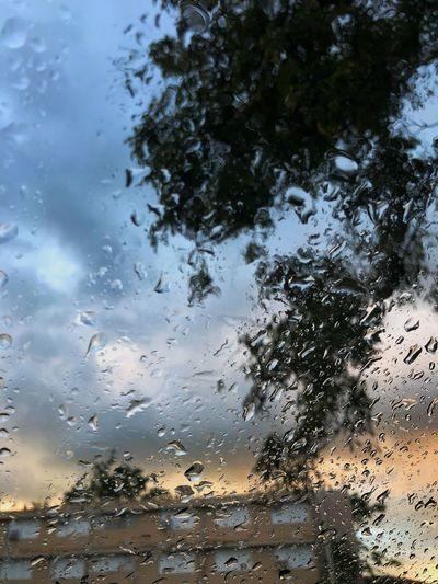 Focus Wet Drop Water Window No People Backgrounds Full Frame Nature Sky