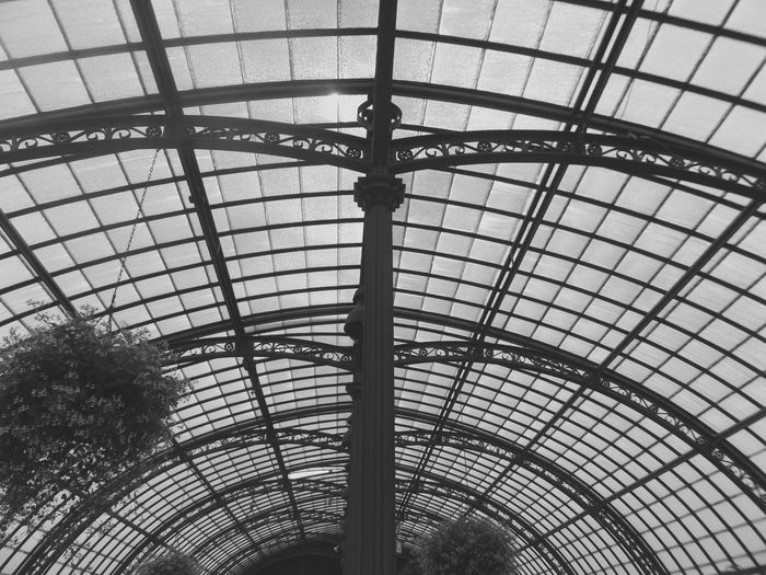 Sky Light Architectural Feature Architecture Backgrounds Built Structure Capital Cities  Ceiling Day Design Directly Below Full Frame Geometric Shape Grid Low Angle View Modern No People Serres De Laeken (Brussels). Sky Skylight The Architect - 2016 EyeEm Awards Tourism Travel Destinations