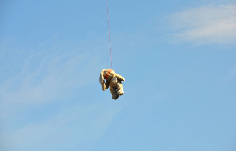 Teddy Bear Hanging From Telephone Line Against Sky