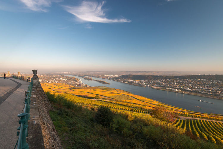 Panoramic view to rheingau, bingen and rheinhessen with coloring vineyard in autumn against blue sky