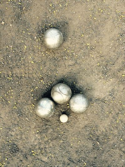 Boule Boccia Boule Games Pétanque Balls Animal Shell Animal Themes Ball Beach Bretonne Close-up Day Directly Above Game High Angle View Nature No People Outdoors Sand Sea Life Seashell Silver Colored Sport
