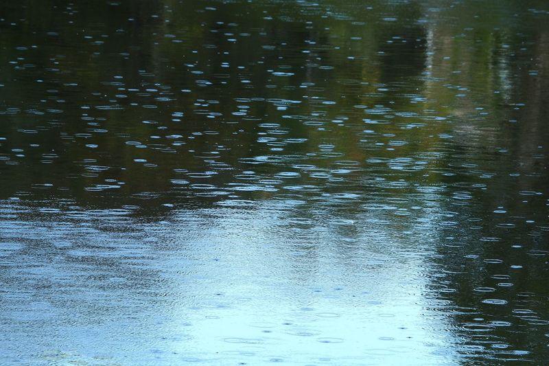 Raindrops Raindrops On Lake Backgrounds