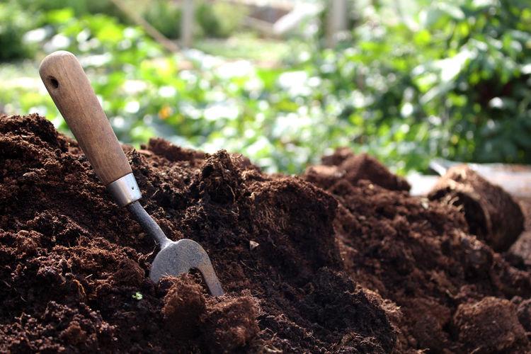 Close-up of rake in soil