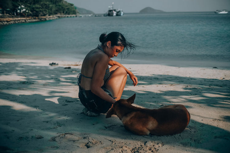 Side View Of Woman Playing With Dog At Beach