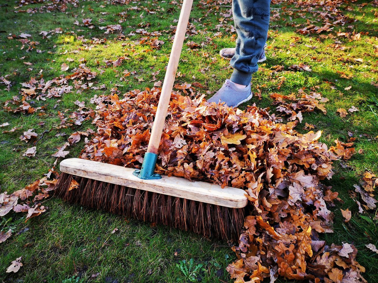 autumn, leaf, low section, broom, plant part, nature, cleaning, human leg, one person, rake, day, plant, sweeping, standing, change, human body part, real people, outdoors, body part, leaves, human limb, messy, gardening