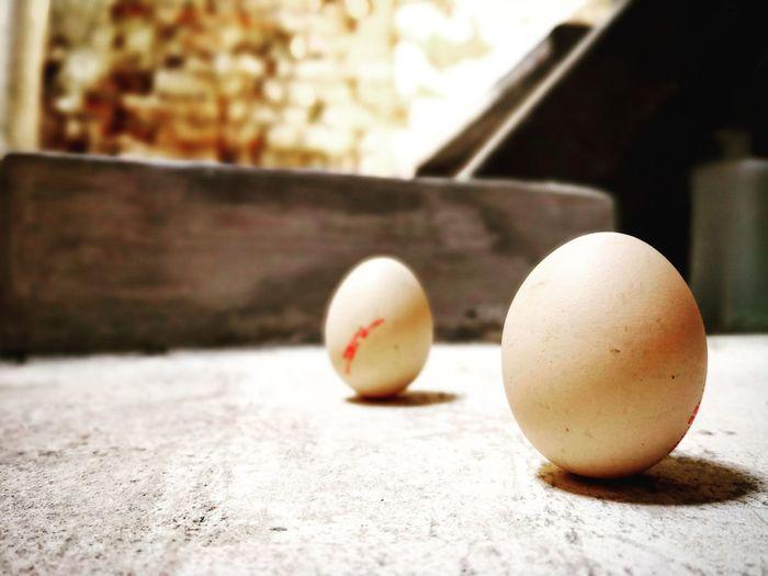 believe it Natural Power Inner Power 立春 Chinese Practice EyeEm Selects Inner Power Sport Ball Easter Egg Close-up Egg Carton Eggshell