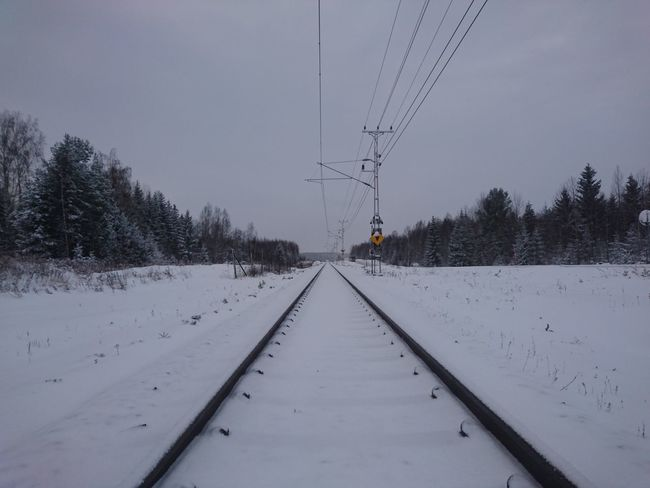 Tree Nature Cold Temperature Winter Snow Beauty In Nature No People Outdoors Day Sky November Hälsingland Norrland Sweden Winterland Transport Transportation Train Railroad Track Railroad Tracks