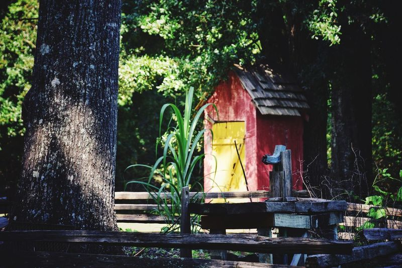 outhouse Louisiana Orange Full Daylight Backyard Trees Fence Greenery Outhouses Outhouse Collection Old Settlement Old Sett Tree Architecture Built Structure Building Exterior Latch Closed Door