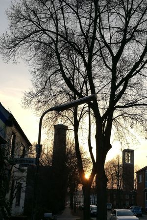 Sunset City Sky Cityscape Building Exterior City Street Travel Destinations Built Structure Architecture Outdoors City Life Tree Urban Road No People