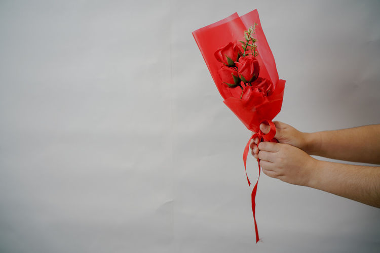 Midsection of person holding red rose against white wall
