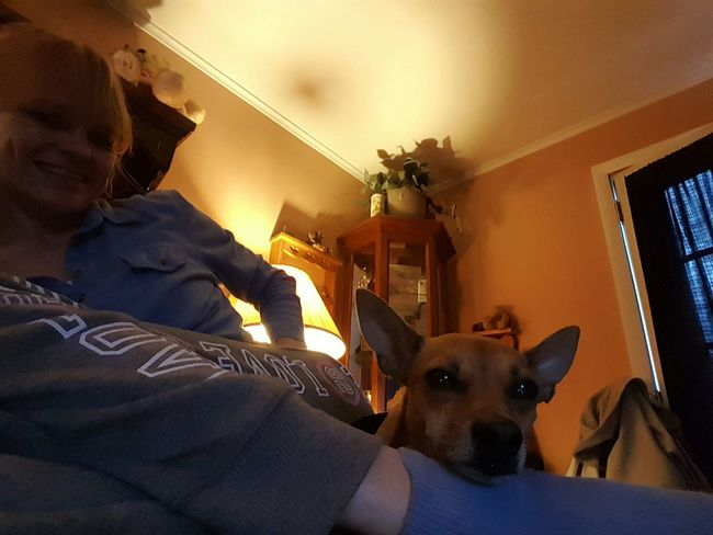 That's Me and Peanut :) Selfie ✌ Petselfie Ilovemydog Pets Corner Chihuahua Dog❤ Dog Lover Dogslife