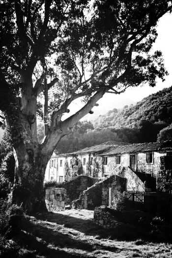 Abandoned Buildings Portugal Campo De Besteiros Blackandwhite