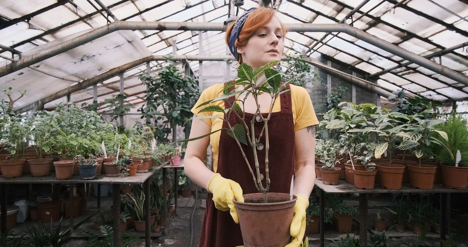 Young woman standing in greenhouse