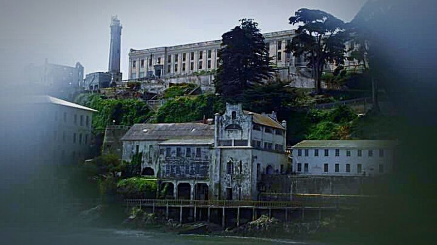 San Francisco Bay The Architect - 2016 EyeEm Awards My Photography Architecture Photography San Francisco Boat Tour Penitentiary Island Prison Island Prison Tourist Attraction  Trees And Sky The Rock Alcatraz Island Alcatraz