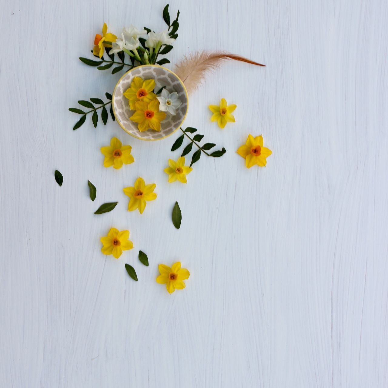High Angle View Of Yellow Flowers On Table