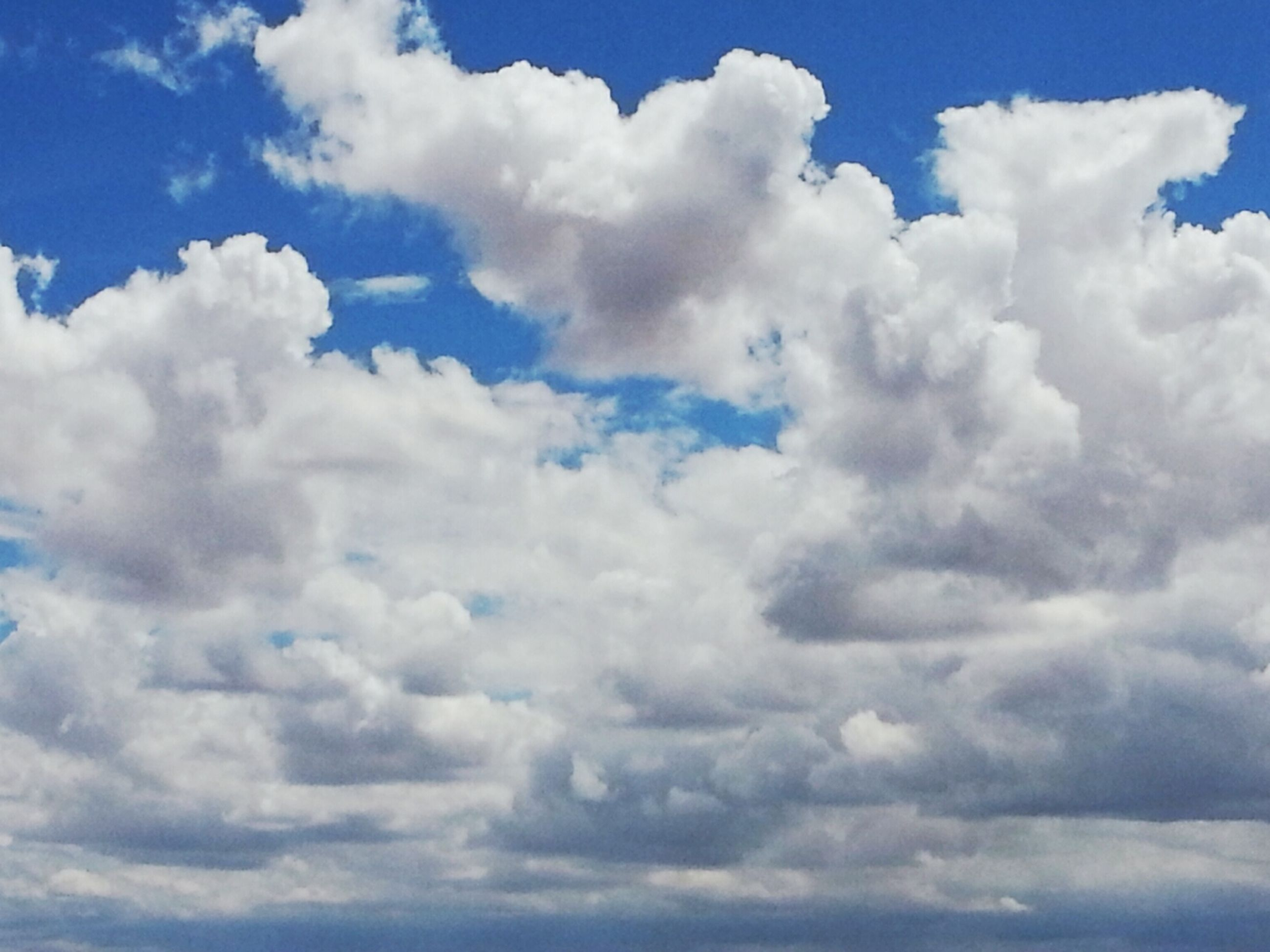 sky, cloud - sky, sky only, beauty in nature, tranquility, low angle view, scenics, tranquil scene, blue, nature, cloudscape, cloudy, cloud, white color, backgrounds, full frame, idyllic, fluffy, white, day