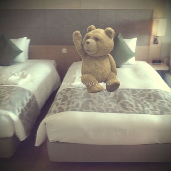 It seems he's going to into the hibernation for little while. See you soon Ted! テッド、しばらく冬眠するご様子。