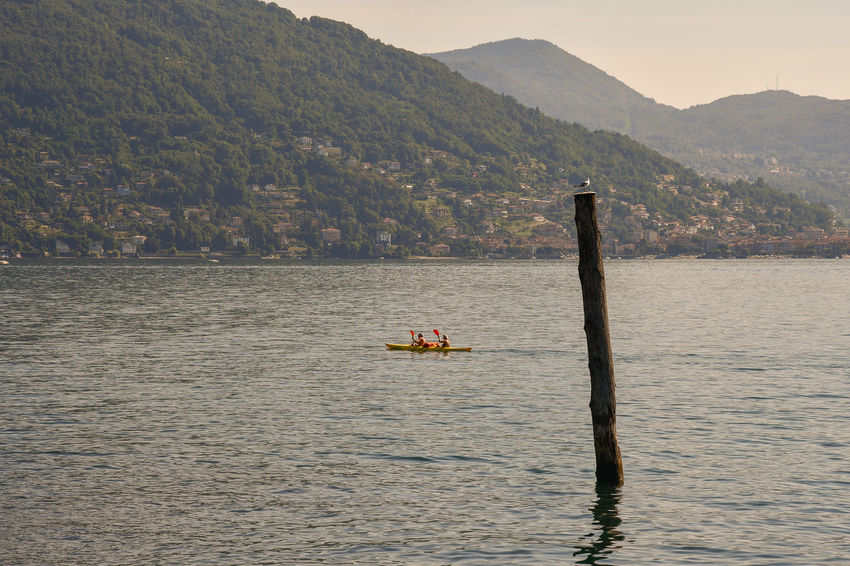 Tourists kayaking on the Maggiore Lake, Baveno, Piedmont, Italy Water Mountain Transportation Waterfront Mode Of Transportation Beauty In Nature Scenics - Nature Real People Nature Tranquil Scene Tranquility Non-urban Scene Outdoors Mountain Range Wooden Post Lake Canoe Kayak Water Sport Maggiore Lake Piedmont Italy Travel Vacation Kayaking Tourism