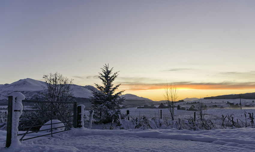Beautiful sunset on a scottish valley covered in snow in the Highlands with mountains in the background and a clear sky ideal for copyspace Fairytale  Frost Gate Orange Quite Rural Scotland Scottish Tranquil Twilight Winter Wood Clear Cold Countryside Fog Highlands Landscape Mountain Peaceful Sky Snow Sunset Valley Wild