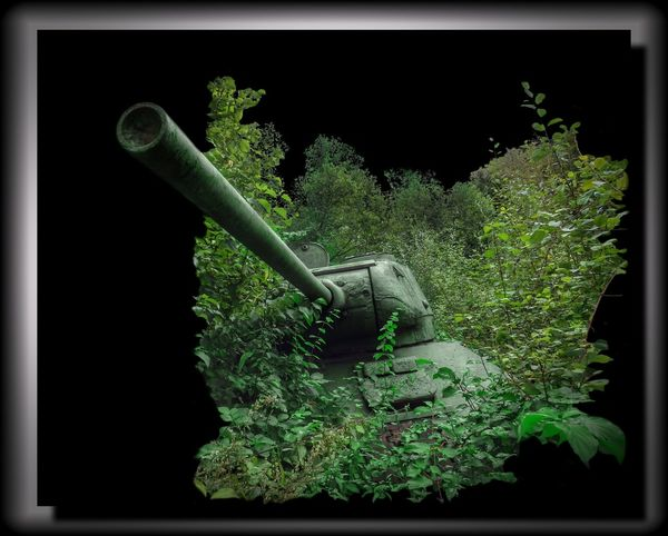 lostplace Lostplaces Panzer EyeEm Best Shots Hüpapics Verfall Kunst Ist Was Du Daraus Machst Tank War