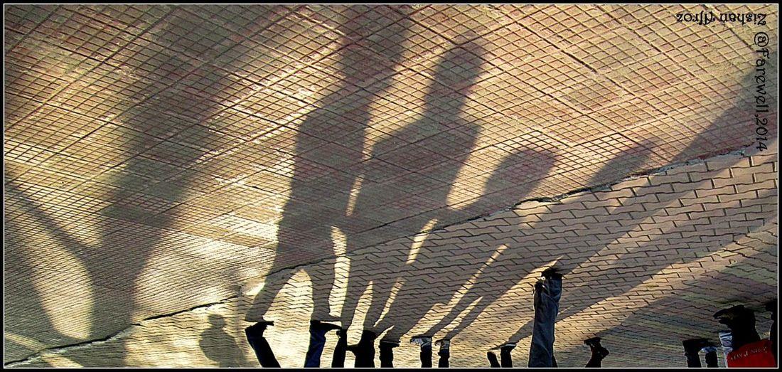 Shadow Memories