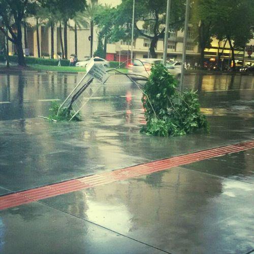 Enquanto isso, na Faria Lima. ... Summerstorm It Rains