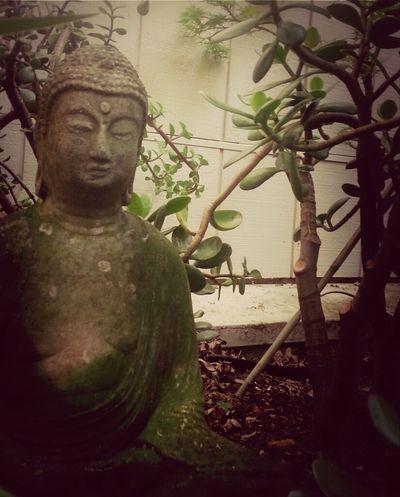 Hanging Out Garden Buddha Buddha Statue