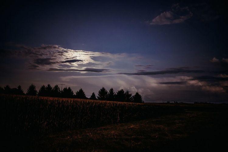 A Night Sky Sky