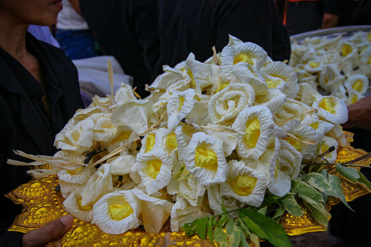 Sandalwood flowers Sandalwood Sandalwood Flower Sandalwood Market Retail  Business Finance And Industry Market Stall Close-up