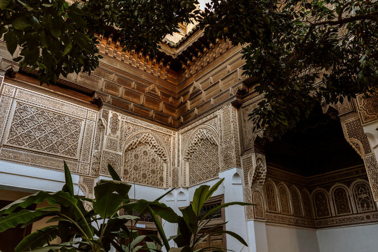 Marrakesh Marrakech Tourist Attraction  Travel Destinations Travel Photography Morocco Architecture No People Built Structure Arch Building Exterior Low Angle View History The Past Design Plant Part Architectural Column Growth Green Color Ornate Tree Building