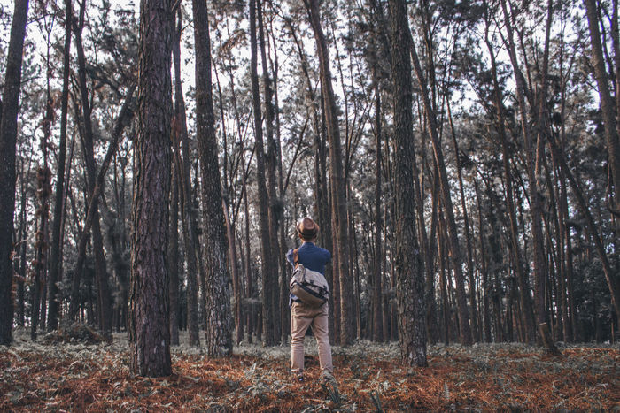 Capture The Moment Behind the photographer. Alone Travel Nature In The Forest Minimalism
