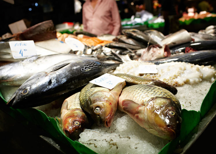 Fishes at market for sale