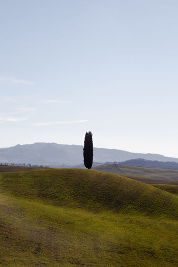 Pienza Pienza (toscana) Paesaggio Crete Senesi Siena Val D'orcia Cypresses Sky Environment Tranquil Scene Landscape Tranquility Plant Scenics - Nature Beauty In Nature Non-urban Scene Nature Grass Land Field No People Green Color Growth Day Tree Copy Space Mountain Outdoors