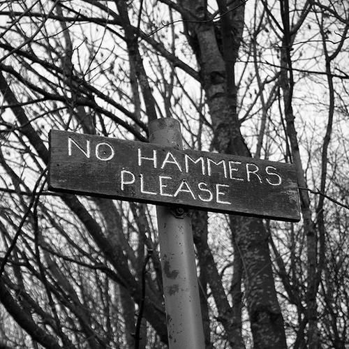 Going looking fossils? Don't bring a hammer or 'ammer :-) at Wrens Nest in Dudley. Instagram POTD Instagood Igers IGDaily Instapic Nature Walking Countryside Rural Outdoors Love Dudleycouncil Dudley Wrensnest Fossils Blackcountry Blackandwhite Leica Leicacamera Monochrome