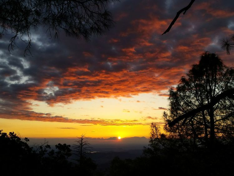 Bright Colors No People Red Clouds EyeEmNewHere Breathtaking_beauty Sunset Dramatic Sky Nature