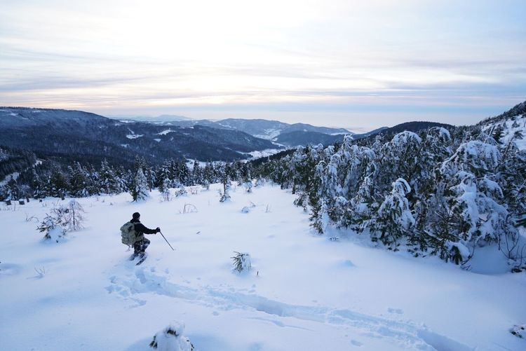 Snow Sports Going down with a view Winter Snow Cold Temperature Weather Nature Beauty In Nature Scenics Outdoors Day One Person Landscape Sky Real People Mountain Mammal Tree Animal Themes