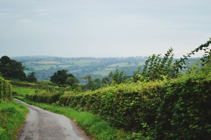 The Way Forward Landscape Road Green Color Solitude Remote Day Hay On Wye Welsh Border Beauty In Nature Holiday