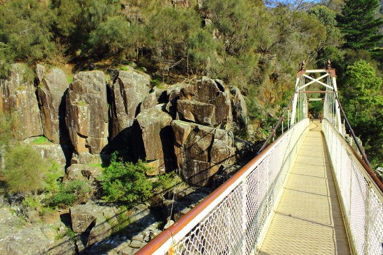 Australia Beauty In Nature Bridge Day Eye4photography  Nature No People Outdoors Path Rock - Object Rocks Modern Architecture Tasmania TasmaniaAustralia Tree Trees Way Forward