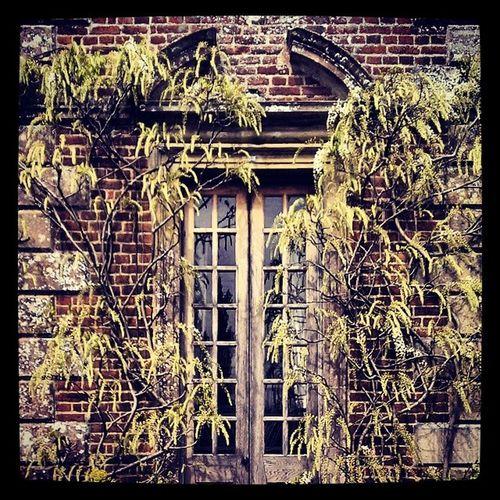Healgarden Wiltshire