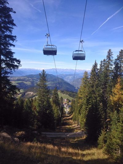 Obereggen Val D'Ega Eggental South Tyrol Trentino Alto Adige Alto Adige Italy Latemar Mountain Dolomites Dolomiti Alps Tree Sky Cable Nature Landscape Beauty In Nature Tranquil Scene Tranquility Scenics Day Overhead Cable Car Growth No People Outdoors Forest Transportation Hanging Ski Lift Grass